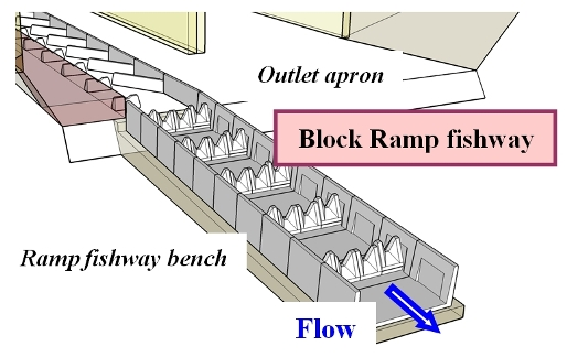 Block Ramp Fishway Configuration